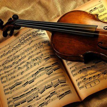 Волшебная скрипка!!!